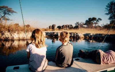 Les impératifs de toute virée en famille au cœur du Botswana