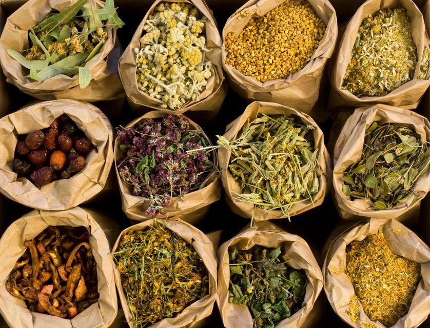 Qu'est-ce qu'un herboriste ?