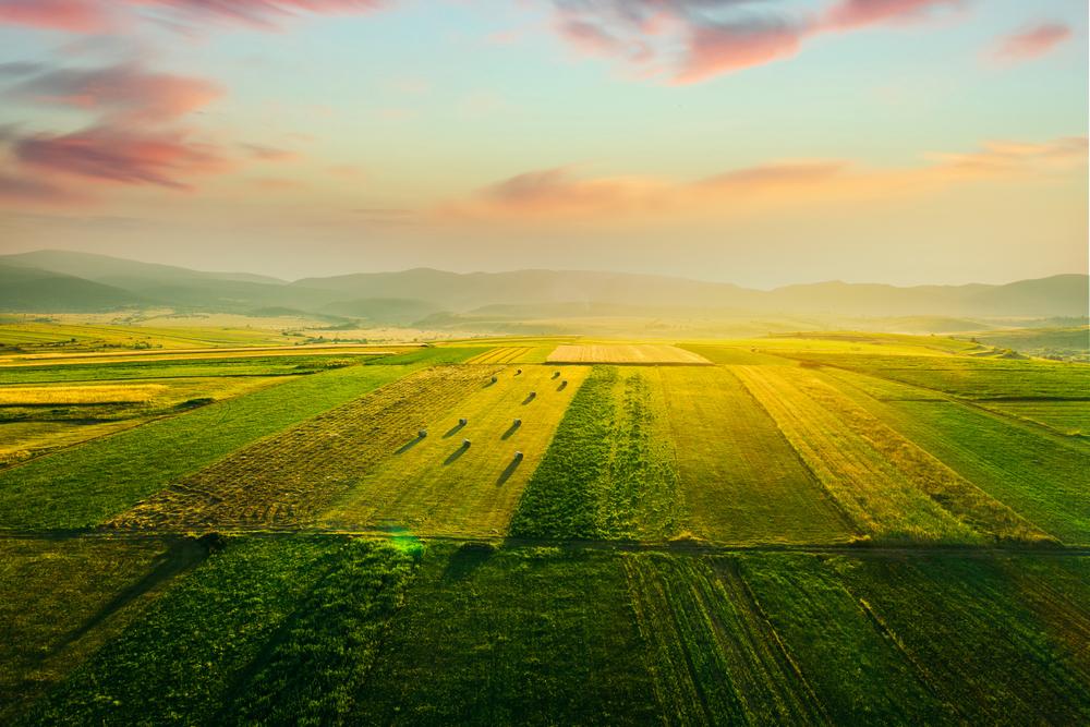 C'est quoi l'agriculture durable ?