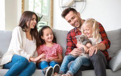 Famille : les avantages d'adopter un chat